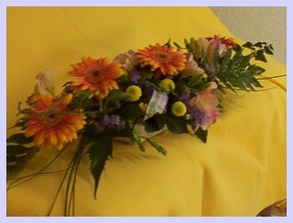 Alsace strasbourg fleurs de rome le catalogue for Catalogue de fleurs
